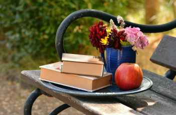 books-read-bouquet-relax-159499.jpeg