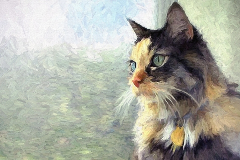 a1b63-cat-in-window-painting-home
